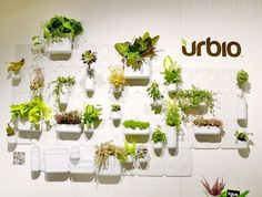 Urbio - a system of mix and match modular planters and organizers that snap into place with high-strength magnets. allows for a personalized wall garden
