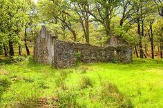 An abandoned 'famine house', County Mayo, Ireland - Jim Zuckerman Abandoned Houses, Abandoned Places, Irish Famine, Ireland Pictures, Irish Potatoes, County Mayo, Irish Cottage, Into The West, Irish Eyes