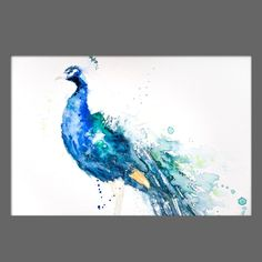 JEN BUCKLEY Original PEACOCK Signed Watercolour PAINTING signed large A3