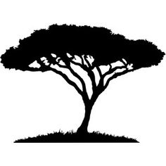 Silhouette Design Store: african acacia tree