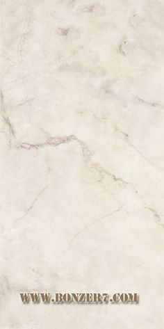 Ceramic Wall tiles - Tressor #Grey – Size 300x600 mm