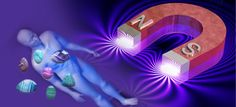 HealthFreedoms – What Is Magnetic Therapy and How It Can Help You