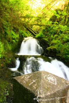 Shepperd's Dell Falls in the beautiful and historic Columbia River Gorge