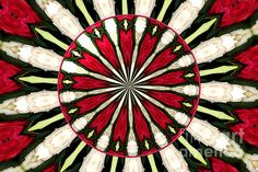 """Roses Kaleidoscope Under Glass 17  : This beautiful kaleidoscope was digitally created from a photograph I took of a lovely bouquet of roses. I also added an """"under glass"""" special effect digitally to the center of the picture. The """"Fine Art America"""" watermark (in the lower right corner) will NOT be on your purchased product.  Prices start at $4.30"""