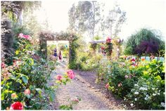 Alice in Wonderland Themed Wedding in Herald, California by Anna Peverertaylo Photography