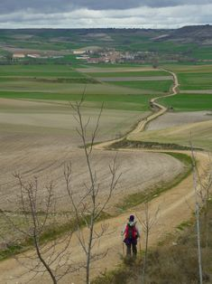 El #camino a Santiago Camino Trail, The Camino, Spanish Sides, Running Of The Bulls, The Road Not Taken, St Jacques, Choose Life, Pamplona, Paths