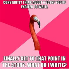 Fanfiction Flamingo -- the struggles of a fanfic writer!!