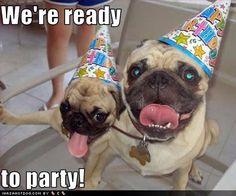 We're ready to party!
