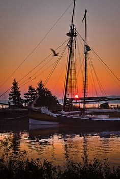 schooners, Michigan