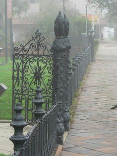 wrought iron gate at Ashton Villa, Galveston