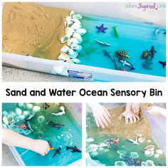 This sand and water ocean sensory bin is a fun way for kids to play and learn about the ocean habitat this summer! It's the perfect activity to celebrate the release of Finding Dory!