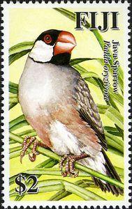 2007 Fiji Java Sparrow Stamp