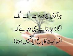 Shayari Urdu Images: Latest Urdu Poetry Quotes Images