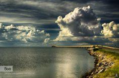 The spirit of Florida by alesgiorgi #landscape #travel