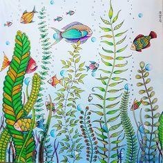 Mein 1 Versuch Mit Aquarellstiften Zu Malen Macht Echt Spass