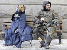 Wimp.com -      Homeless man with his dog ♥