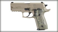 SIG SAUER P229 Elite Scorpion .40.  The best pistol I have shot and used.  I love it.  Highly recommend getting it!