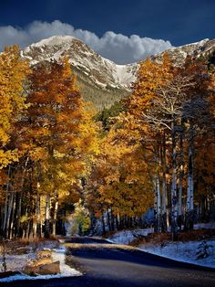 The Rocky Mountains, Colorado Rocky Mountains, Beautiful World, Beautiful Places, Living In Colorado, Colorado Usa, Colorado Rockies, Autumn Scenes, Fall Pictures, Beautiful Landscapes