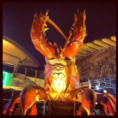 "@ngjiaxun's photo: ""Giant lobster #foodporn #foodpwn"""