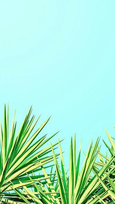Wallpaper backgrounds, iphone wallpaper summer, blue wallpaper phone, i Blue Wallpaper Phone, Wallpaper Für Desktop, Handy Wallpaper, Wallpaper For Your Phone, Blue Wallpapers, Mobile Wallpaper, Pattern Wallpaper, Iphone Wallpapers, Iphone Wallpaper Summer