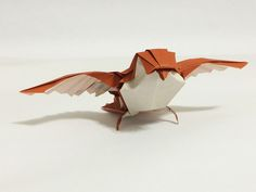"""T21 model 41/57 - """"Robin"""" by Winston Lee by mr.origami"""