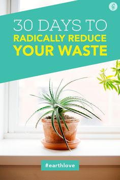 Join Our 30-Day Challenge to Be Less Wasteful! #earthlove #gogreen