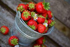 Szamóca (eper) ültetése lépésről-lépésre - CityGreen.hu Strawberry Preserves, Strawberry Fruit, Strawberry Smoothie, Strawberry Recipes, Strawberries, Grape Recipes, Frozen Yoghurt, Fat Burning Diet, Eat Seasonal