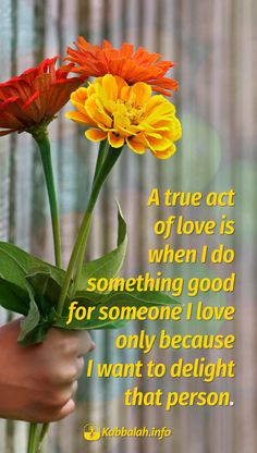 A true act of love is when I do something good for someone I love only because I want to delight that person.  #lovequote #quoteskabbalahinfo #kabbalah #love Get started with live Kabbalah course => http://www.kabbalah.info/bb/kr/?utm_source=pinterest&utm_medium=link&utm_campaign=krgeneral