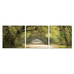 Furinno Senic Green Pathway 3 Panel Canvas on Wood Framed Wall Art - F690GP50