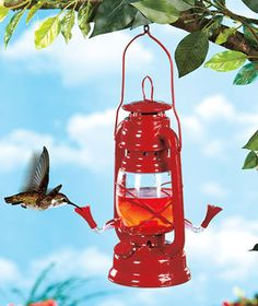 Lantern hummingbird feeder... Like! $13.95