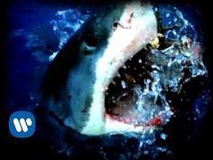 Deftones - My Own Summer   Snare tone example for album