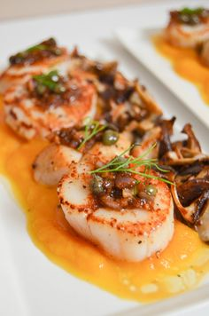 Seared Scallops with Butternut Squash Purée - Crumb Kisses Fish Recipes, Seafood Recipes, Gourmet Recipes, Cooking Recipes, Healthy Recipes, Gourmet Desserts, Butternut Squash Enchiladas, Butternut Squash Ravioli, Fancy Dinner Recipes