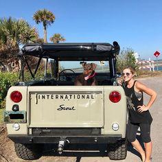Doberman and a scout! Scout Truck, Jeep Scout, International Harvester Truck, International Scout, Old Trucks, Pickup Trucks, Scout 800, Medium Duty Trucks, Beach Cars
