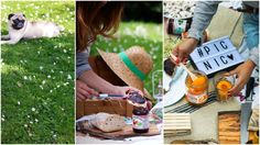 picnic collage conserve
