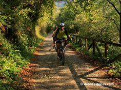 La Senda del Oso Rutas #Asturias [Más info] http://www.desdeasturias.com/la-senda-del-oso/