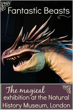 Visiting the Fantastic Beasts exhibition at the Natural History Museum in London with kids - why this magical day out, inspired by the wizarding world and the Newt Scamander movies is so… More