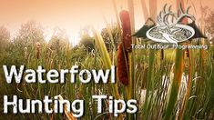 Waterfowl Hunting Tips for Beginners preparing for Goose and Duck Season Hunting Tips, Duck Hunting, Hunting Stuff, Duck Season, Fishing For Beginners, Catfish Fishing, Waterfowl Hunting, Camping Guide, Camping Hacks