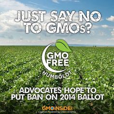GMO Free Humboldt! Advocates Hope To Put Ban on 2014 Ballot! More Here: http://www.times-standard.com/news/ci_24416375/just-say-no-gmos-advocates-hope-put-ban