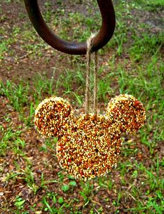 Homemade Bird Feeder Tutorial at http://designdazzle.blogspot.com/2011/07/summer-camp-bird-feeders.html