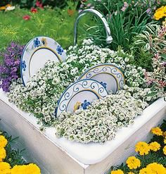 Garden Art - Old sink, a few well-placed dinner plates, and sweet alyssum for suds. Unique Gardens, Amazing Gardens, Garden Crafts, Garden Projects, Do It Yourself Garten, Old Sink, Bloom Where Youre Planted, Pot Jardin, My Secret Garden