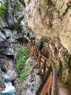Wolfsklamm-familienausflug Wolf, Garden Bridge, Outdoor Structures, Kind, Austria, Places, Travel, Holidays, Hiking Trails
