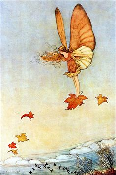 5208a49a857620087c39fafd9d221f96--autumn-leaves-to-autumn.jpg (736×1111)