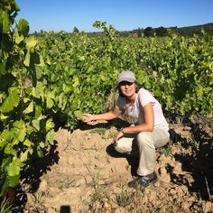 @singleferments finds the Carignan
