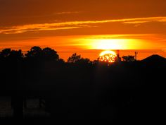 Cedar Key Sunset Cedar Key Florida, Nature Pictures, Celestial, Sunset, Outdoor, Sunsets, Outdoors, Nature Photography, Outdoor Games