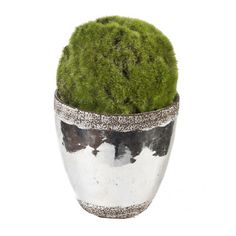 Creative Branch Faux Moss Ball Topiary in Ceramic Pot