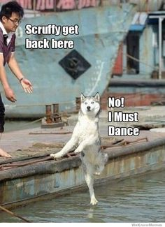 I must dance! Whenever I read this, I always read the dog's line in the voice of Antonio Banderas! So much FUNNIER!