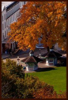 Fall Photo Mackinac Island