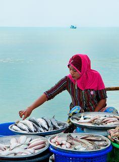 Fresh Fish, shoreline of Nathon in Koh Samui, Thailand.  Photo: John & Tina Reid, via Flickr