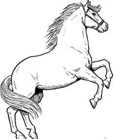 schöne ausmalbilder pferde - ausmalbilder für kinder | ausmalbilder pferde, ausmalbilder pferde