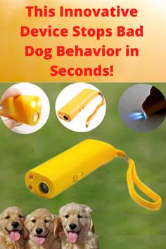 Dog Whistle, Military Dogs, Dog Barking, Dog Behavior, Dog Owners, Doggies, Training, Pets, Diy